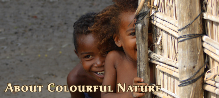 About Colourful Nature